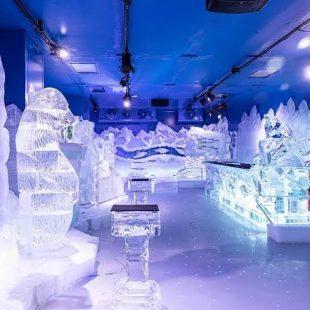 O maior bar de gelo do mundo chega a Fortaleza